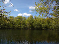 2.5 acre Waterfront building lot on Bob's Lake