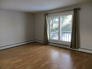 one bedroom large apartment for Feb1st