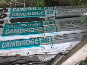 Cambridge Shingles 10$ per pack