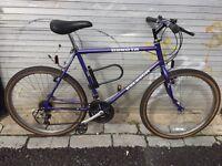 Raleigh Dakota mountain bike