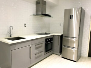 Stunning, modern and clean 1 bd in upscale, downtown building