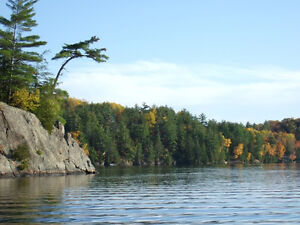 **Cottage in Bancroft 4beds/3.5 Lakefront Peace&Beauty