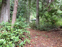 2 1/2 ACRE LOT ready for your dream home