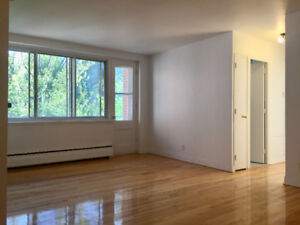 (1er Août) FULLY RENOVATED - 4.5 - With View - CDN Metro