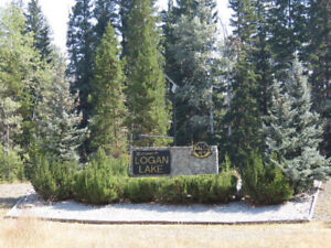 Building Lot in Logan Lake BC For Sale