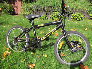 Kids Triumph Rave bike i, very nice condition. 4-5 years and up
