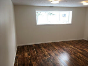 Newly renovated bachelor suite - all utilities included