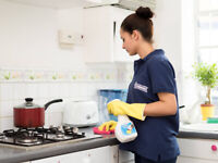 Quality house cleaner required $15/hr to start