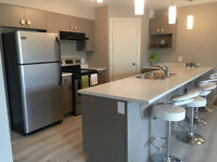 Furnished, Brand New 3 Bedroom Apartment