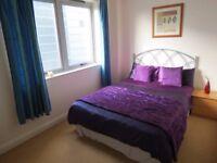 bright double bedroom / modern flat