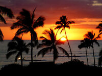 SUPER SALE - Kihei in Maui - Gorgeous 2 bdrm condo only $149/ngt