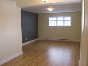 Bright and Spacious Two Bedroom Basement Apartment