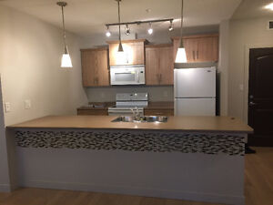 Apartment for Rent at The Summits! In Eagle Ridge