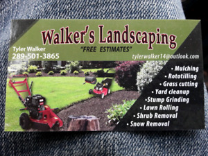 Tree Cutting/Stump Grinding. Call or text 289-501-3865