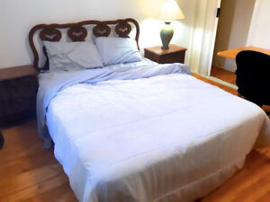 $550 Tons of the light,  room for rent !! grande chambre