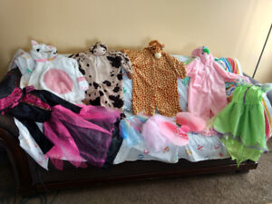 Various Kids Costumes Size 4-6