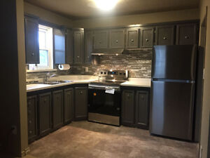 Newly renovated 2 bedroom 707sq ft apt near courthouse