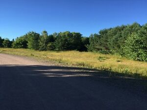 Build your dream house on this 3 acres lot