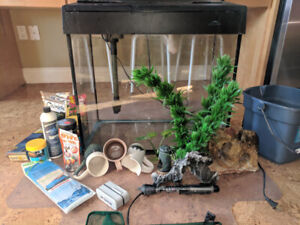 Fish Tank, Stank, Decorations and Food