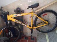 Specialized mountain bike!