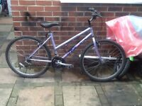 Coventry vision mountain bike