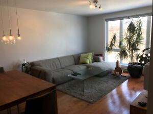 Condo luxueux meublé avec terrasse sur rue Villeray, 750 SQ.FT