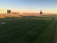 T. A. Green Enterprises - Commercial and Industrial Lawn Care