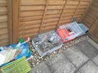 3 Hamsters Cages
