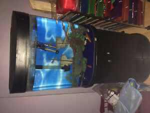 aquarium 40 gallon en rond