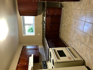 Bright, spacious one bedroom basement apartment in east end