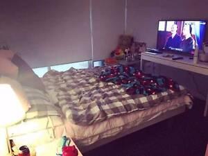 Master room in modern unit, waterloo Waterloo Inner Sydney Preview