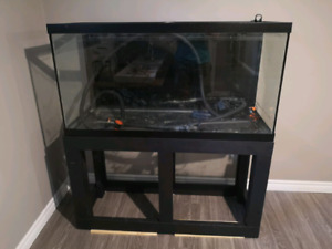 90 Gal Aquarium and stand, glass in mint shape 200 obo