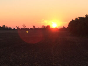 Looking for Farm Land to Rent in the Greater Peterborough Area
