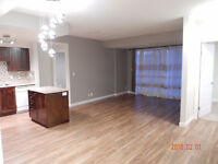 15th floor core downtown apt - west side available immediately