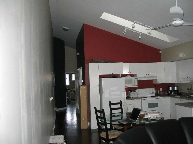 Beautiful 1 Bedroom New York Style Loft July 1st
