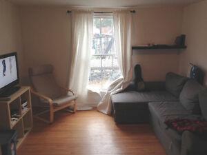 1 Bedroom + Den Hintonburg Apartment