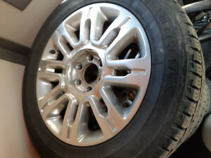 Ford f150 platinum wheels and tires