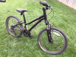 Trek Pre-Caliber 20 Girls 6-Speed bike for sale!