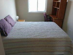Master Bedroom for Rent available now Kingston Kingston Area image 9