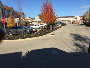 Fall / Leaf / Yard cleanup / Eavestrough Cleaning Kitchener / Waterloo Kitchener Area image 7