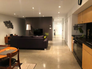 Fully Furnished Spacious Trendy One Bedroom Apt Parking Included