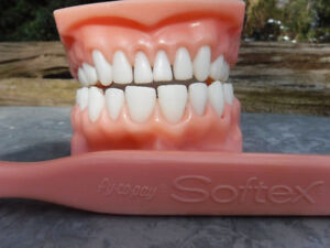 VINTAGE BIG TOY TOOTHBRUSH & DENTURES STORE DISPLAY PY CO PAY
