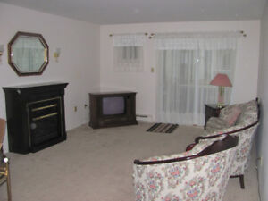 MOVE in before the snow flies for less than $145,000. 2-Bd Condo