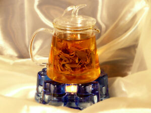 Beautiful Borosilicate Tea Pot Half Price Clearance