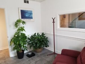 RMT- Room For RENT in Wellness Center