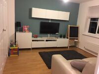 Handy Man - No Job Too Small - Flat packs, Shelving, Pictures, Painting.