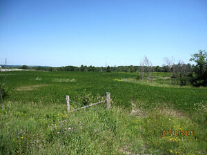 AGRICULTURE LAND, RURAL RESIDENCES, FARMING ACREAGES FOR SALE