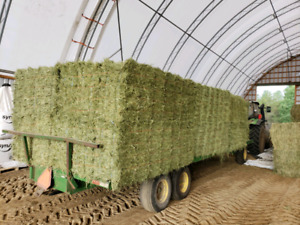 Renting quality farmland, and buying standing hay
