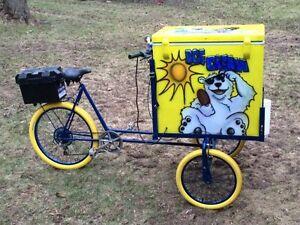 Ice Cream Bike Custom Made