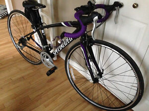 """Specialized Dolce femme 44"""""""